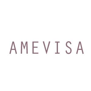 AMEVISA